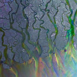 Alt-J - An Awesome Wave