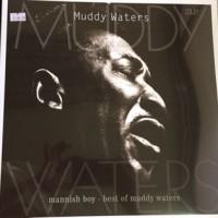 muddy water 2
