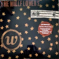 the wallflowers bringing down the horse