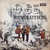q65 revolution