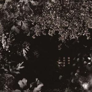 陳綺貞 / 花的姿態三部曲 ( 3+1 珍藏版黑膠套裝組LP/180g)(無編號版)