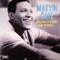 Marvin Gaye Stubborn Kind Of Fellow