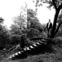 timber album