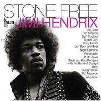 Various – Stone Free