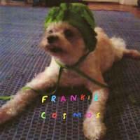 Frankie Cosmos – Zentropy