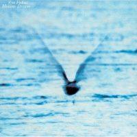 Ryo Fukui – Mellow Dream