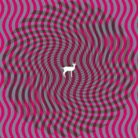 Deerhunter – Cryptograms : Fluorescent Grey