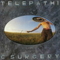 The Flaming Lips ‎– Telepathic Surgery