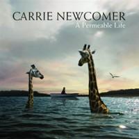 A Permeable Life