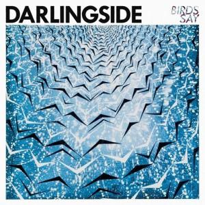 Darlingside Birds Say