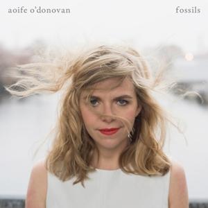 O'Donovan, Aoife Fossils