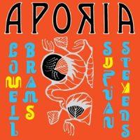 Sufjan Stevens & Lowell Brams - Aporia