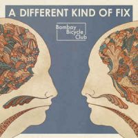 Bombay Bicycle Club ‎– A Different Kind Of Fix